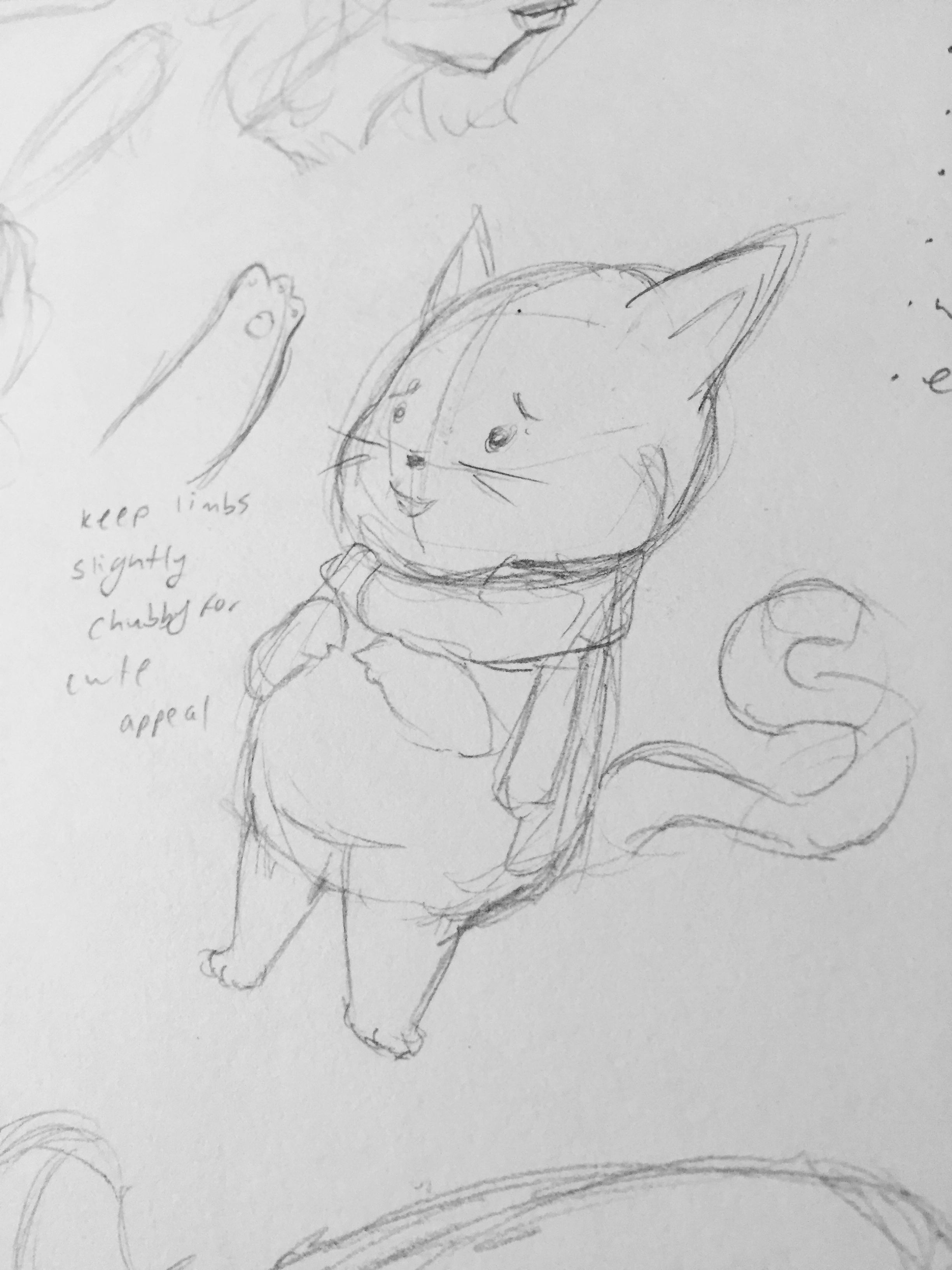 Chubbster Cat Sketch 2