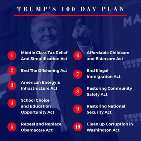 100 day plan of Trump & Co.